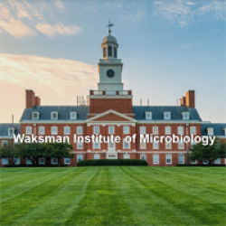 Waksman Institute of Microbiology